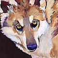Night Eyes by Pat Saunders-White