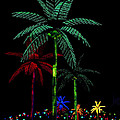 Night Lights Electric Palm Trees by Karon Melillo DeVega