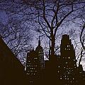 Night Lights Empire State by David Hohmann