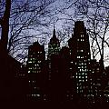 Night Lights Empire State Two Trees by David Hohmann
