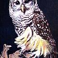 Night Owl by Vivien Rhyan