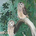 Night Owls by Lora Duguay