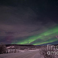 Night Skies by Priska Wettstein