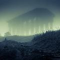 Penshaw Monument At Night by David Mckenna