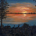 Nightfall At Loxahatchee by Karen Zuk Rosenblatt