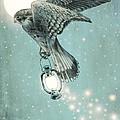 Nighthawk by Eric Fan