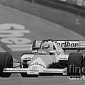 Niki Lauda. 1984 British Grand Prix by Oleg Konin