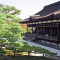 Ninna-ji Temple Garden - Kyoto Japan by Daniel Hagerman
