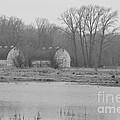 Nisqually Twin Barns by Jan Noblitt