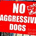 No Aggressive Dogs by Ed Weidman