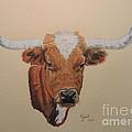 No Bull by Gail Seufferlein