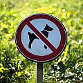 No Dogs Allowed Sign by Frank Gaertner