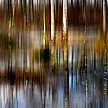 No Egrets II by Sergio Smiriglio