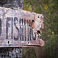 No Fishing by Brenda Bryant