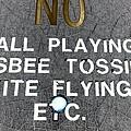 No Fun by Ed Weidman