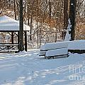 No Picnic Today by Jack Schultz