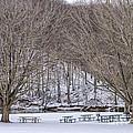 Snowy Picnic Ground In Winter by William Kuta
