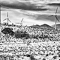 No Place Like Home Bw Palm Springs Desert Hot Springs by William Dey