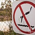 No Swimming by Tim Hester