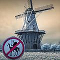 No Tilting At Windmills by Randall Nyhof