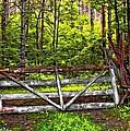 No Trespassing by Steve Harrington