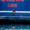 No Wake Zone by Amar Sheow