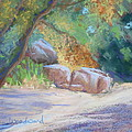 No Water At Cienega Creek by Susan Woodward