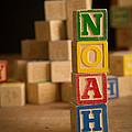 Noah - Alphabet Blocks by Edward Fielding