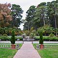 Norfolk Botanical Gardens 5 by Jeelan Clark
