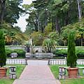 Norfolk Botanical Gardens 6 by Jeelan Clark