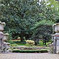 Norfolk Botanical Gardens 7 by Jeelan Clark