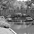Norfolk Botanical Gardens Bw by MCM Photography