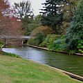 Norfolk Botanical Gardens Canal 3 by Jeelan Clark
