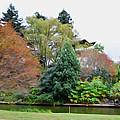 Norfolk Botanical Gardens Canal 9 by Jeelan Clark