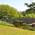 Norfolk Botanical Gardens In Color by MCM Photography