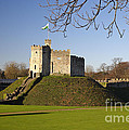 Norman Keep Cardiff Castle by Premierlight Images