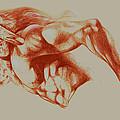 North American Minotaur Red Sketch by Derrick Higgins