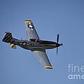 North American P-51d Mustang by Douglas Barnard