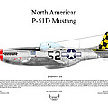 North American P-51d Shimmy Iv by Arthur Eggers