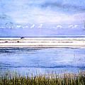 North Beach by Eagle  Finegan