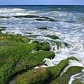 North Carolina Coastal Rocks by Mountains to the Sea Photo