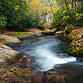 North Carolina Mountain River In Autumn Fall Foliage by Dave Allen
