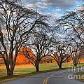 North Carolina Sloan Park Sunset by Adam Jewell