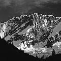 1m2616-bw-north Face Mt. Bonney  by Ed  Cooper Photography