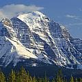 1m3549-north Face Of Mt. Temple by Ed  Cooper Photography