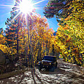 North Lake Road Fall Color Jeep by Scott McGuire