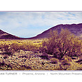 North Mountain Preserve by Dan Turner