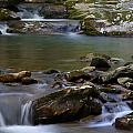 North Prong Of Flat Fork Creek by Daniel Reed