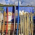 North Shore Surf Shop by DJ Florek