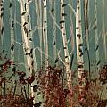 Northern Birch by Bill Clay